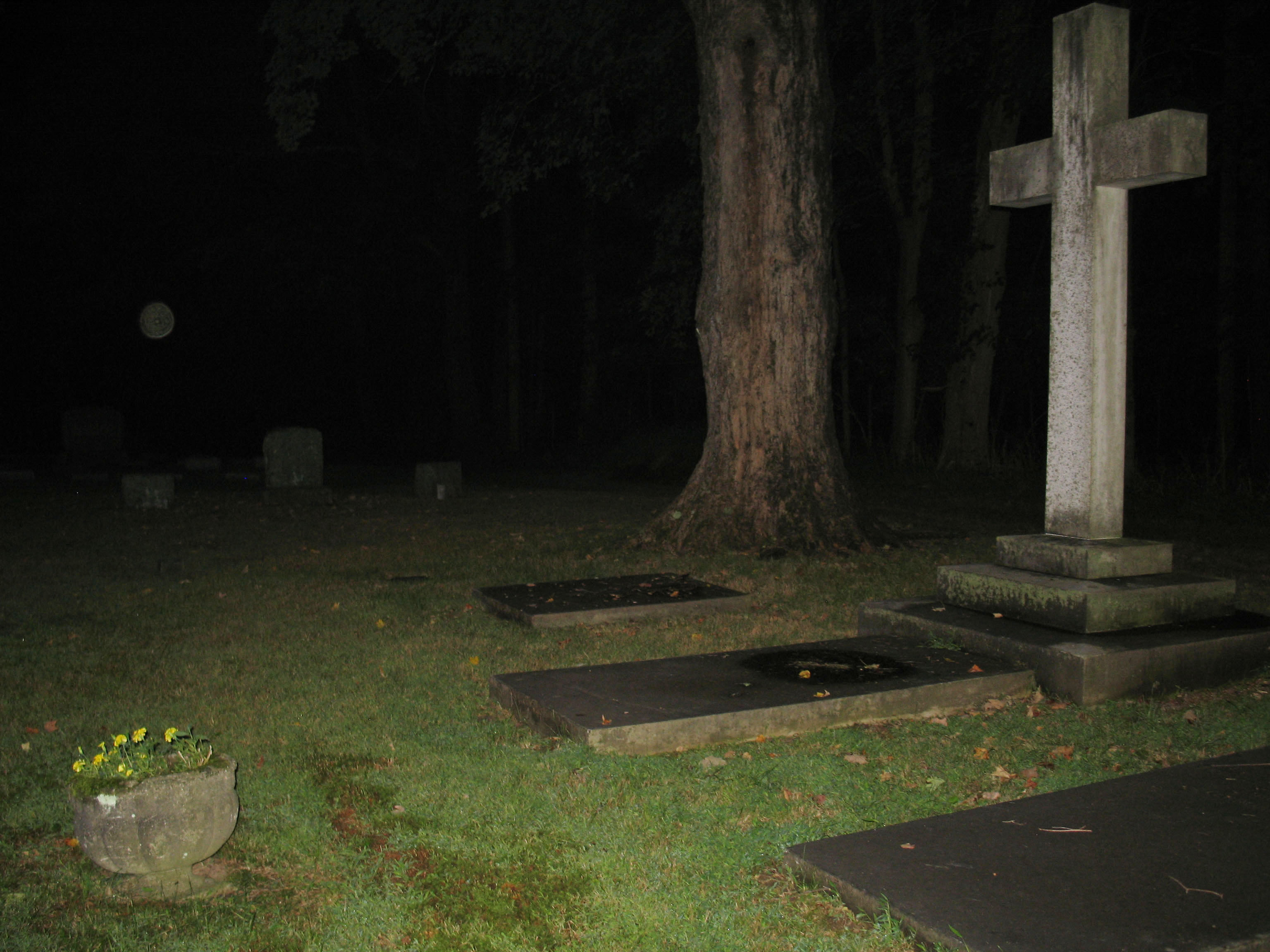 entities r us ghost hunter comic westchester cemetery investigations