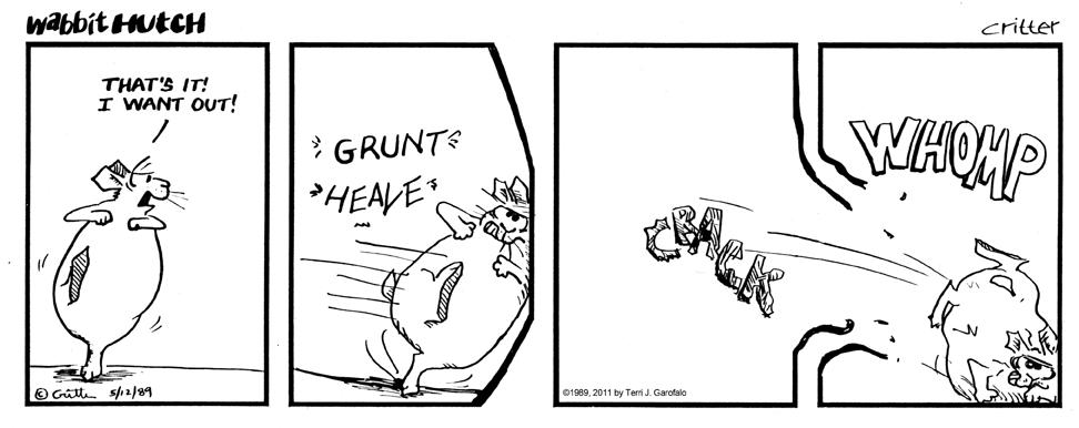 Wabbit Hutch 8